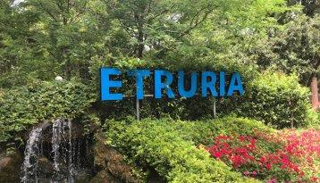 Etruria - Ingang