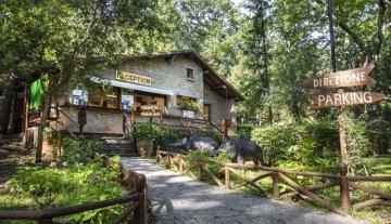 Montescudaio - Restaurant